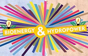 Bioenergy & Hydropower in India