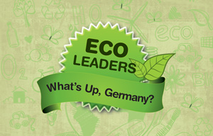 Eco Leaders: Energising India with Clean Energy